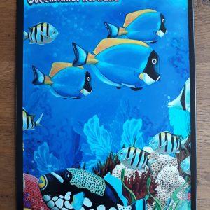 Metalen wandbord Great Barrier Reef - Queensland - Australia